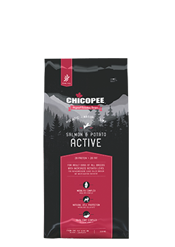 Dogfood Active